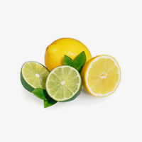 Hermit_Dutch-Coastal-Gin_Botanicals_Citrus_01_300x300